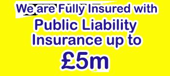 WFC 5 million insurance